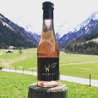 weinfly-energy-wine-germany-alps